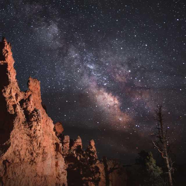 Bryce Canyon Night Sky