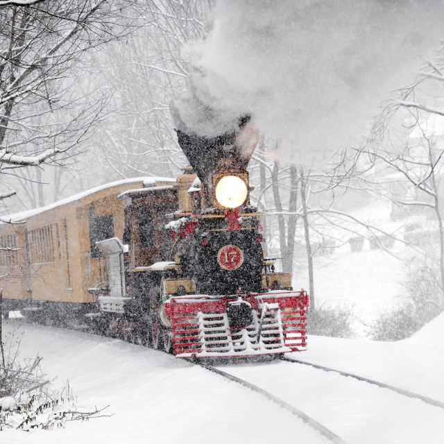 Steam Into History Holiday Train
