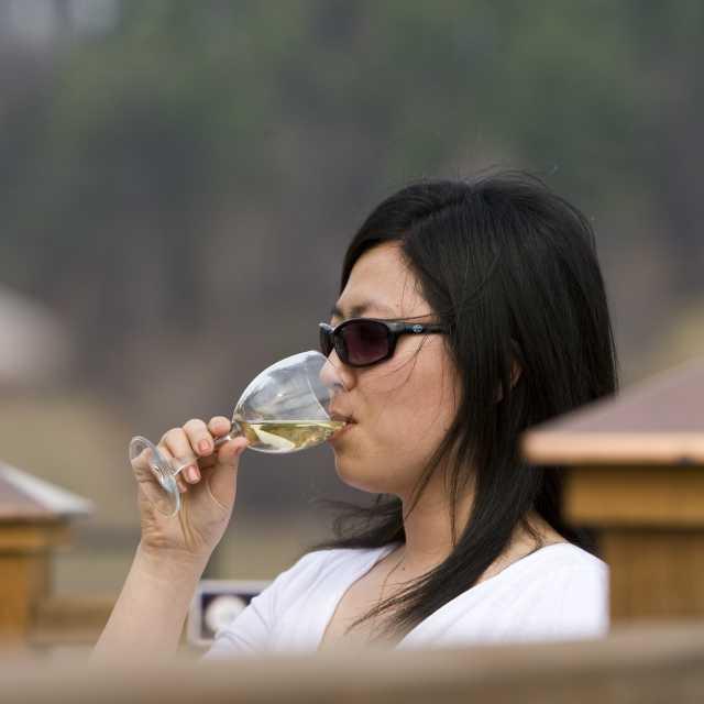 Winery 50_jpg_1