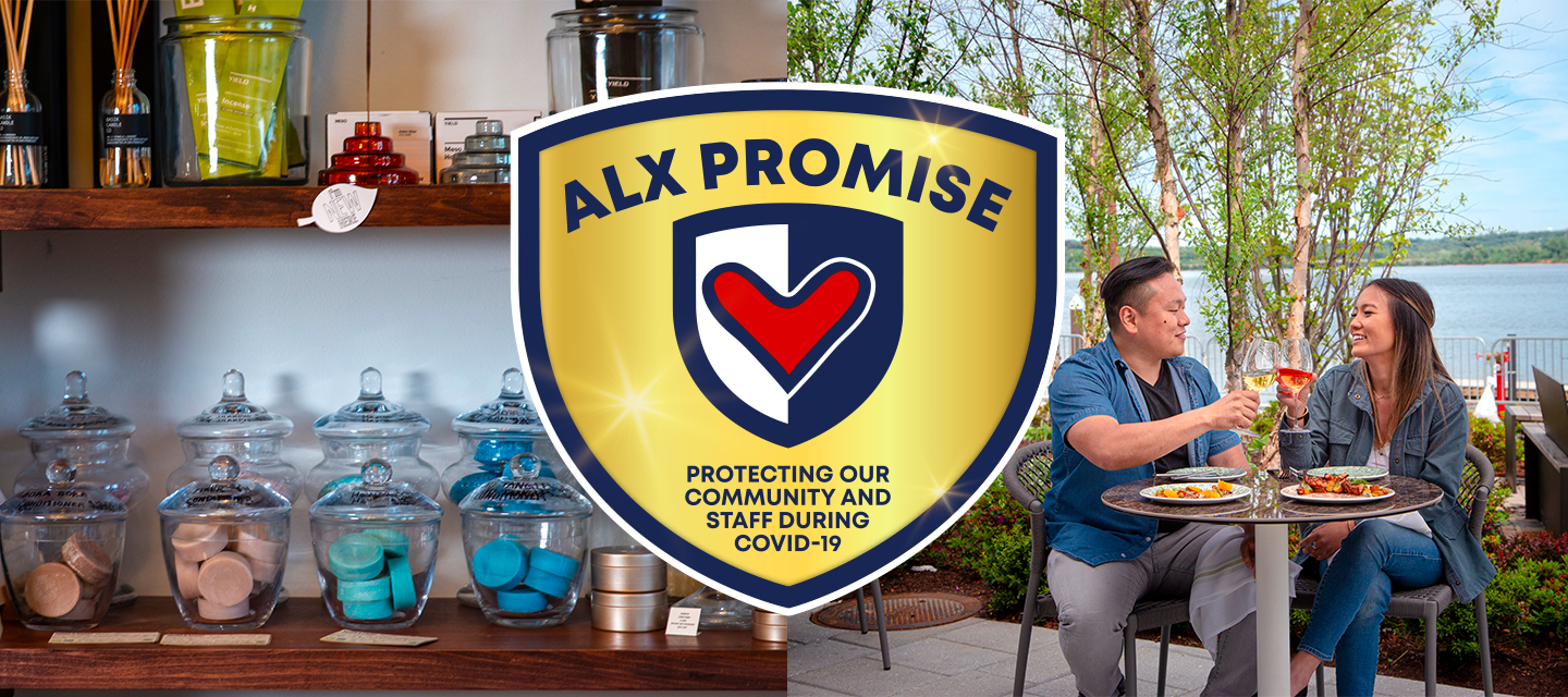 ALX Promise Gold