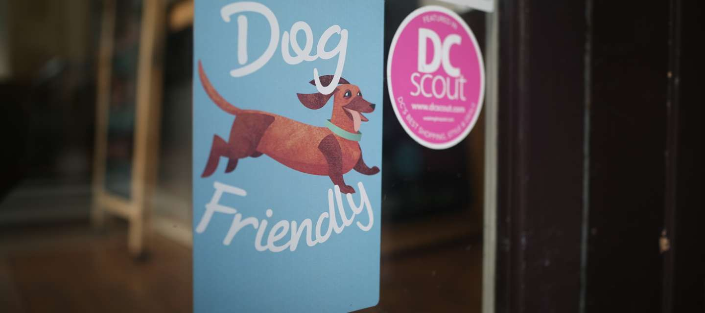 Dog Friendly Boutiques