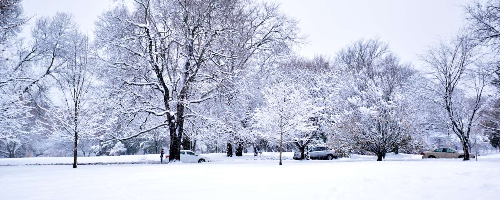 Washington Park in winter with snow