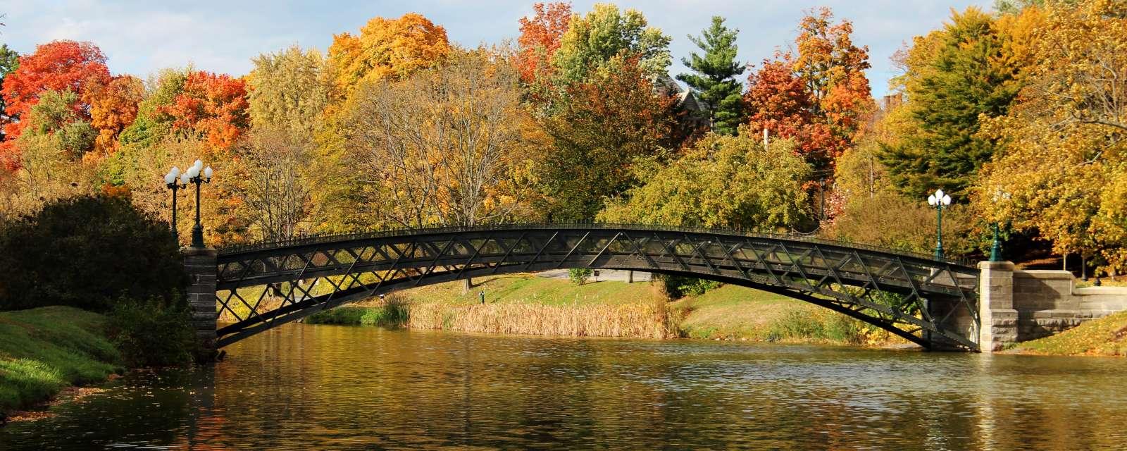 Washington Park during the Fall