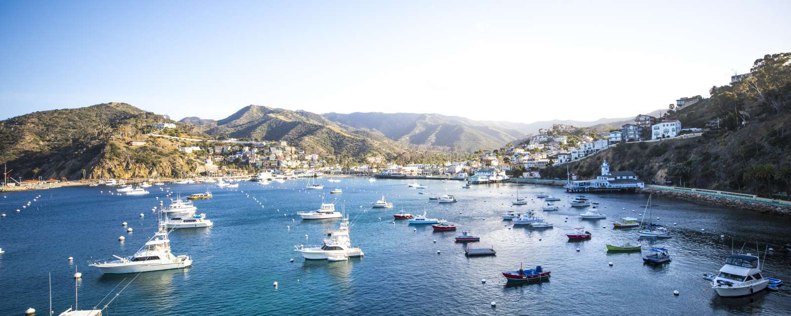 Privacy Policy Visit Catalina Island