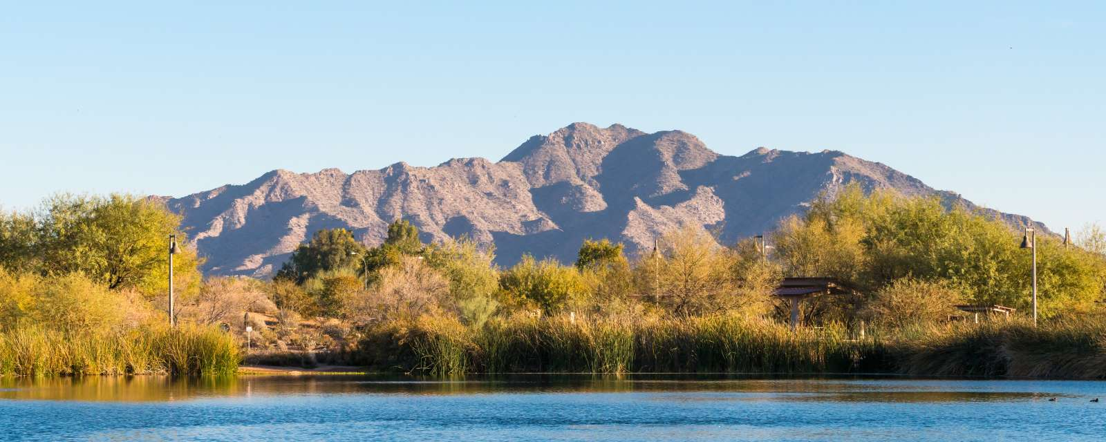 Things To Do In Chandler Az Attractions Museums Golf