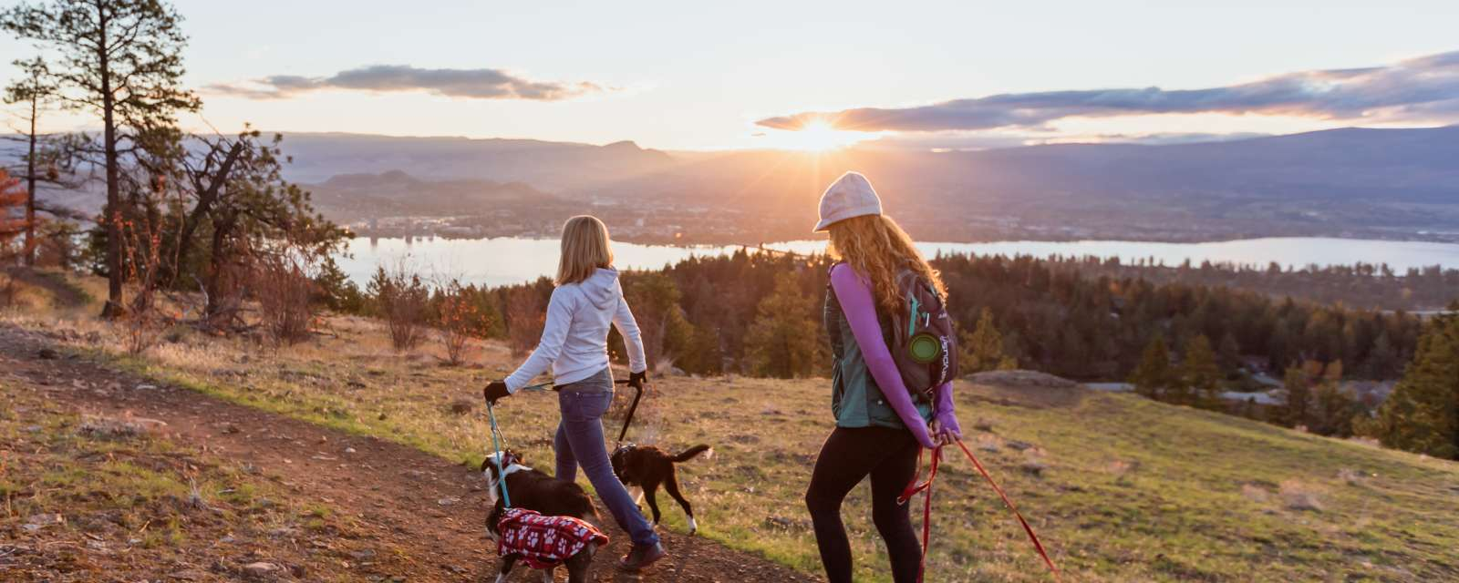 Dog-Friendly Activities in Kelowna | Parks & Beaches