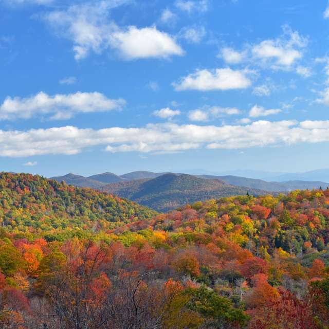 Things to Do in Asheville This Weekend — October 18-20, 2019