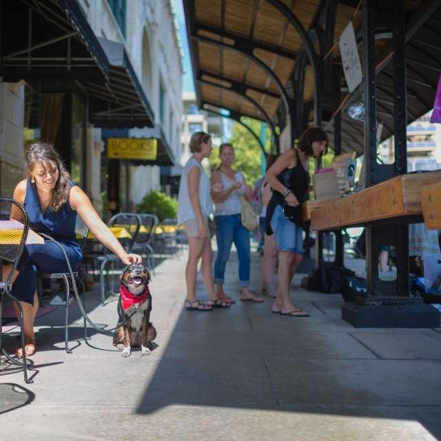 Dog-Friendly Adventures in Asheville