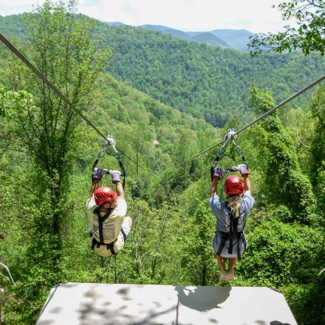 Thrills for Everyone: A Zipline Guide to Asheville
