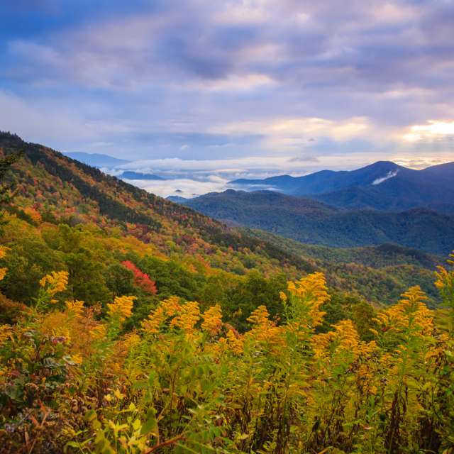 Fall: Sweeping Mountain Views, Color Mapping & Autumn Adventures
