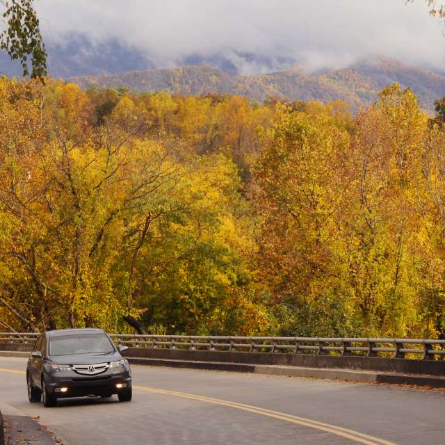 Best Fall Drives For Experiencing Craft Art in Asheville