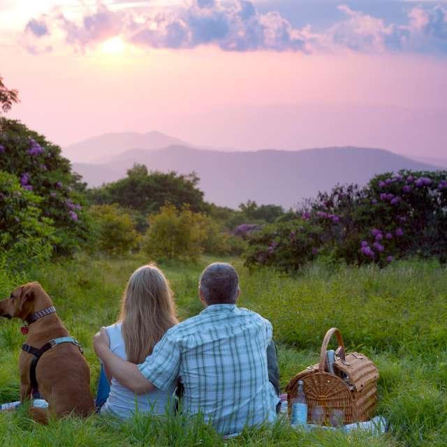 Super Scenic Picnics with 360-Degree Views