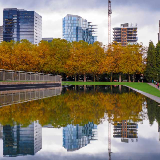 Bellevue Downtown Park Skyline and Pond