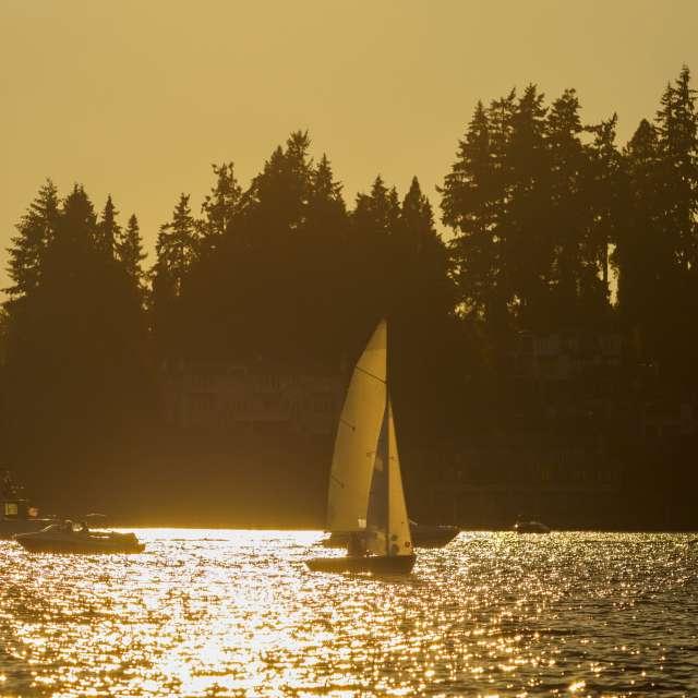 Lake Washington Sailboat