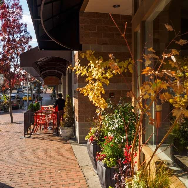 Main Street Old Bellevue