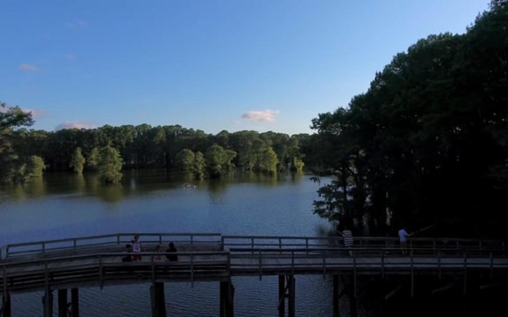 Greenfield Lake Park & Gardens, Wilmington, NC