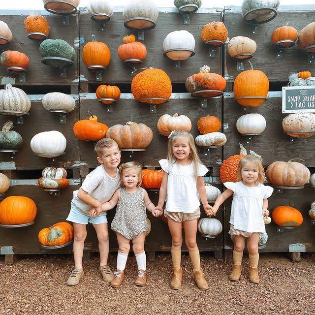 Sweet Thistle Farms pumpkin wall