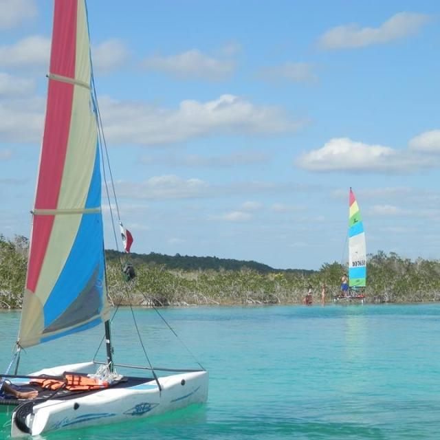 Multihull Windsailing Boats