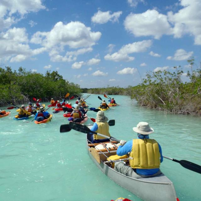 People Sea Kayaking
