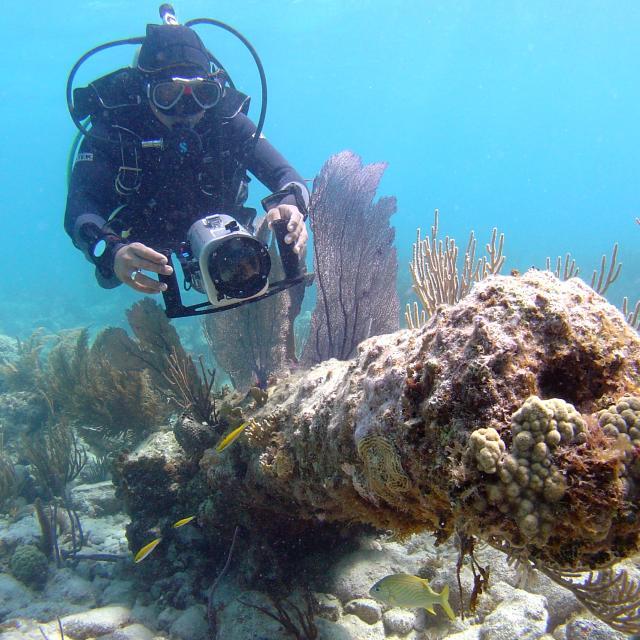 Scuba Diver in Banco Chinchorro
