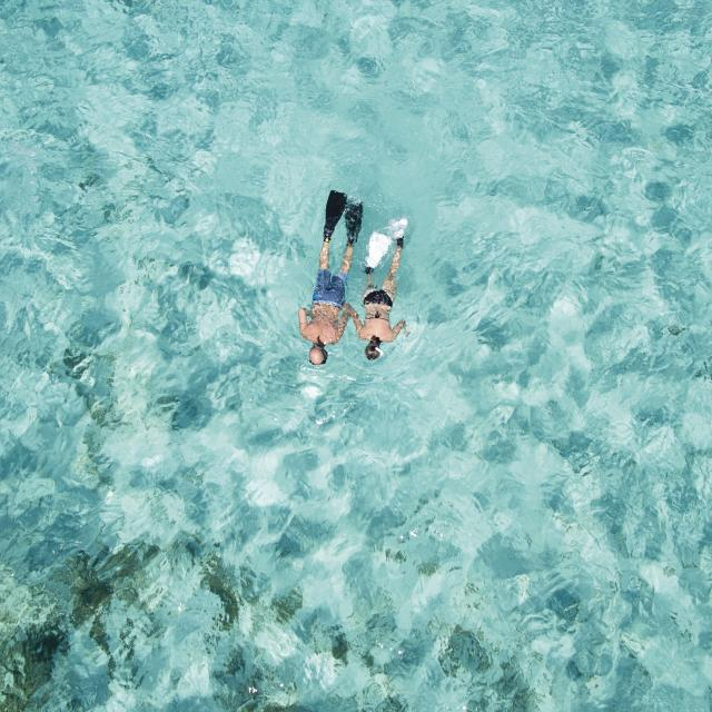 Aerial Shot of Snorkelers