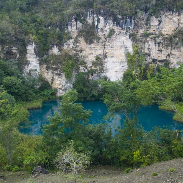 Cenote Cocodrilo