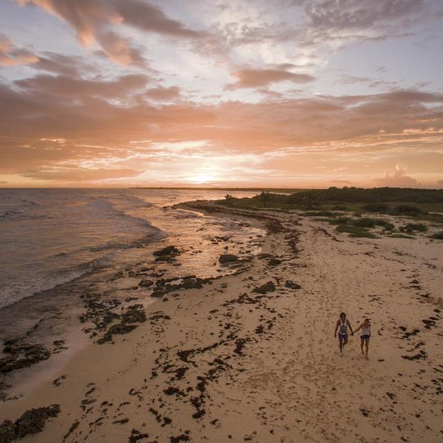 Sunset Drone Beach Shot