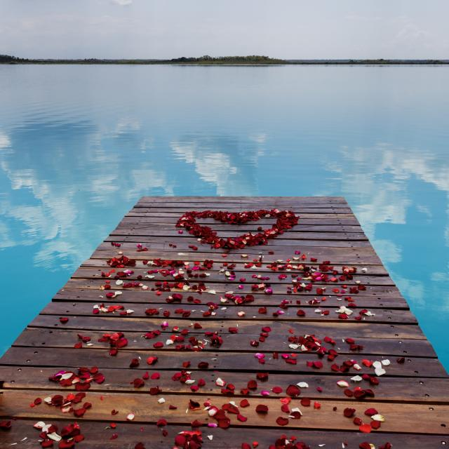 Flower Petals on Pier in Heart Shape