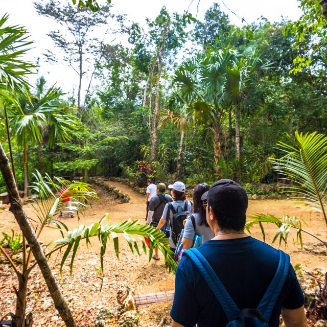 Tourists Hiking through Jungle Gardens
