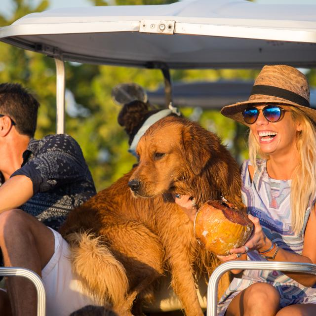 Woman with dog on golf cart
