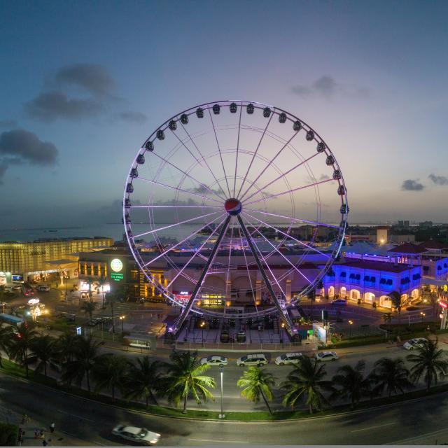 Ferris Wheel Panorama 1