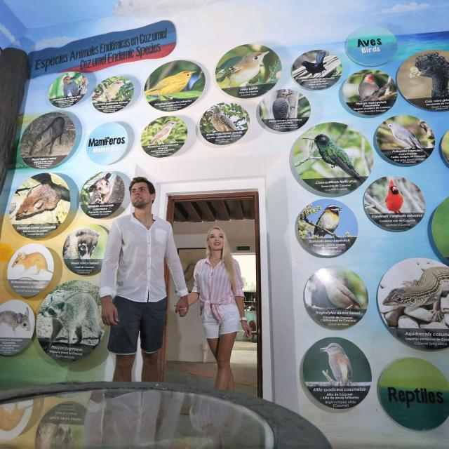 Punta Sur Native Species Exhibit