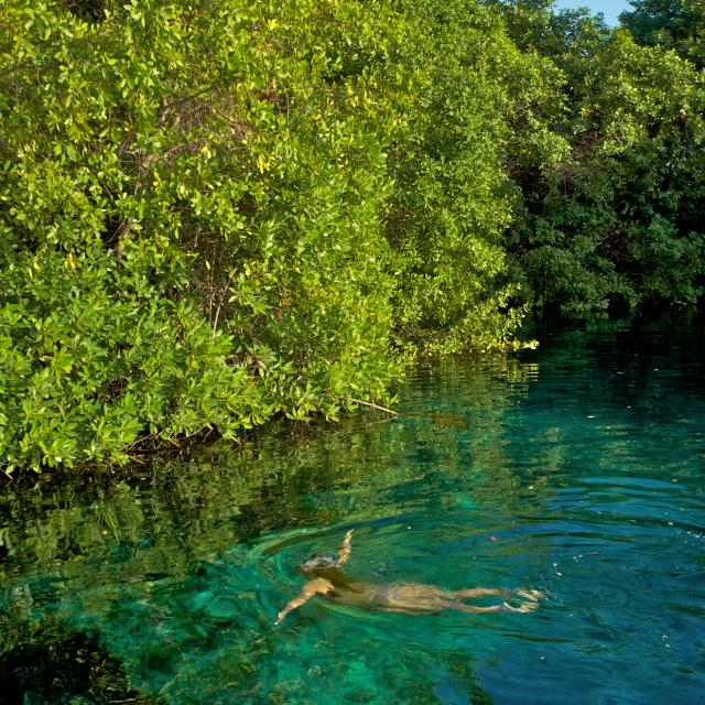 Woman Swimming in Cenote Lagoon