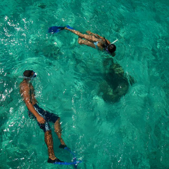 People Snorkeling in Clear Water