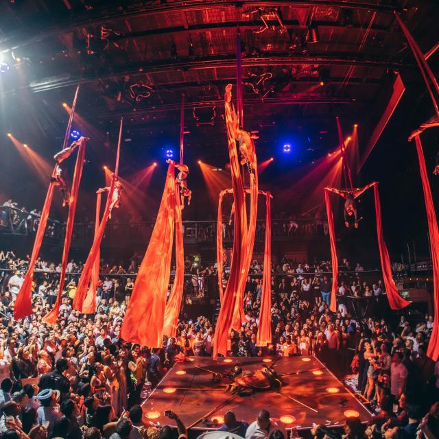 Aerial Silk Acrobats