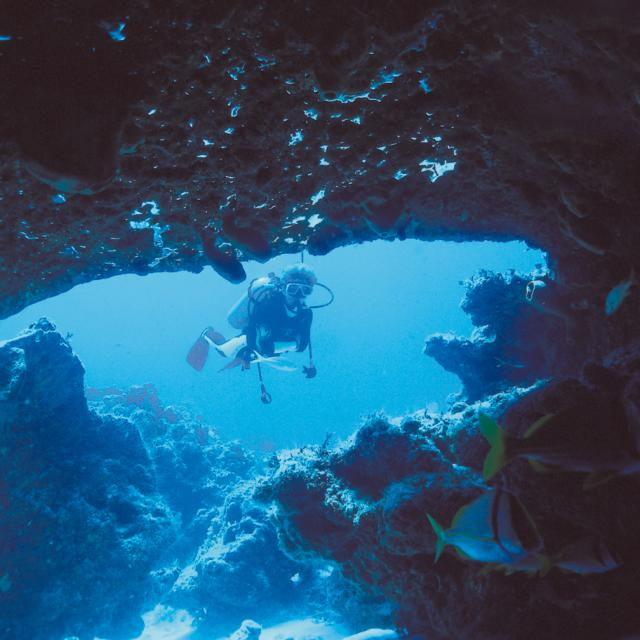Diver and Fish in Underwater Cave