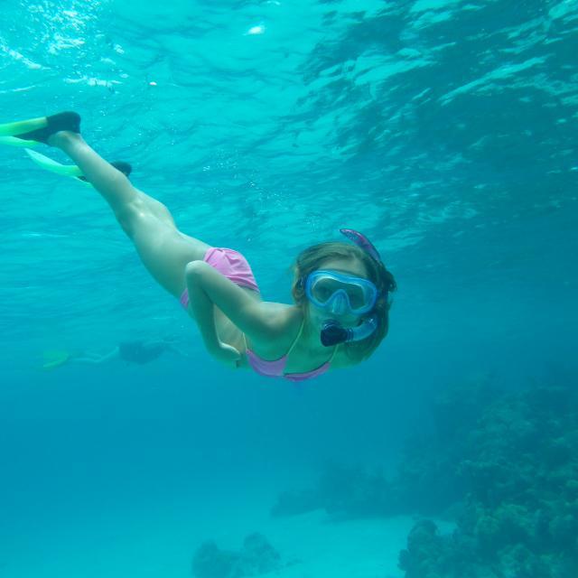 Mahahual - Snorkeler