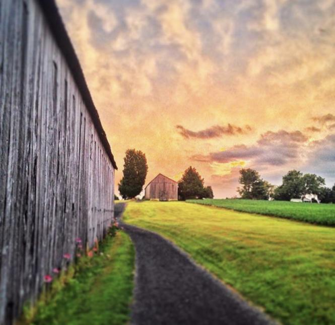 Harwood Hills Farm at sunset in southern Anne Arundel County.