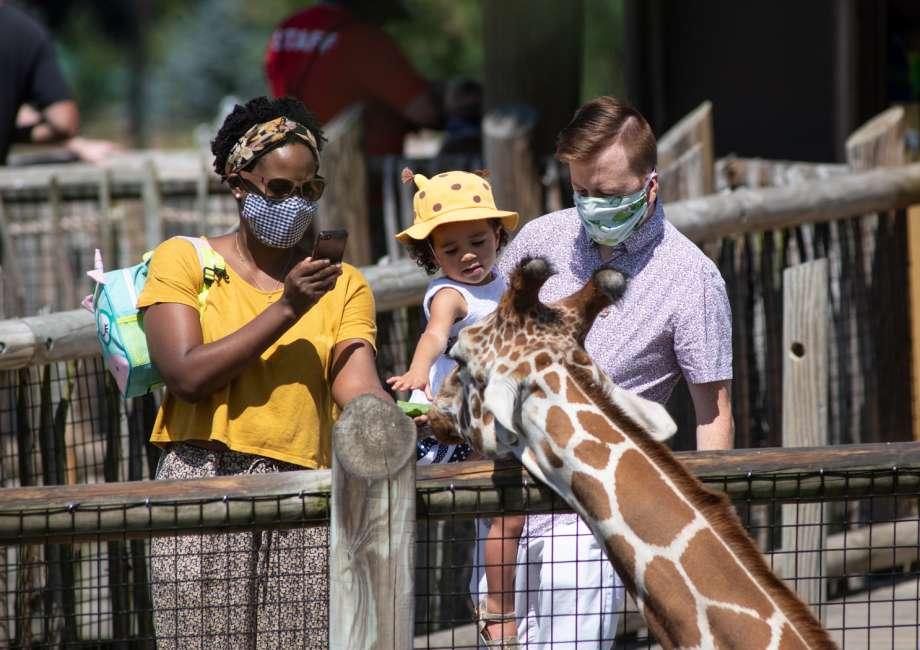 Guests wearing masks petting a giraffe at the Columbus Zoo and Aquarium