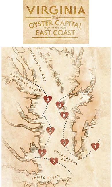 Virginia's Oyster Regions