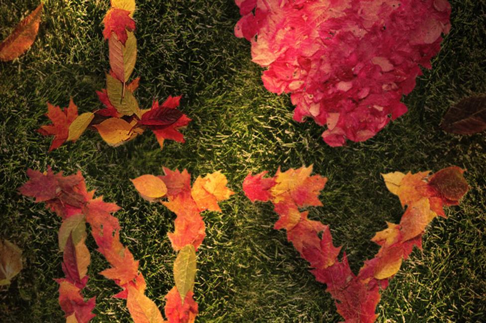 I Love NY logo in Foliage