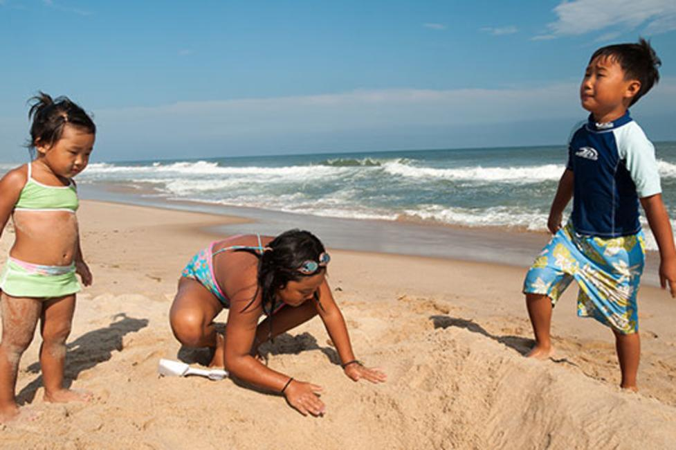 Beach in Long Island