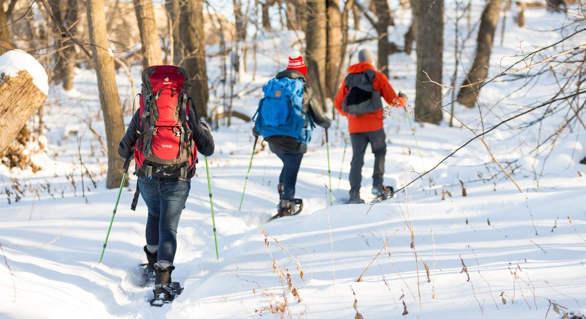 Three people snowshoe through the trails on the UW campus