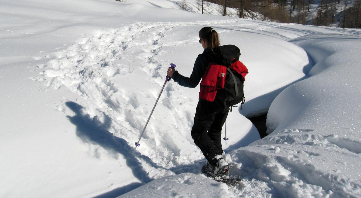 Copy of Snow Shoeing in Lory State Park