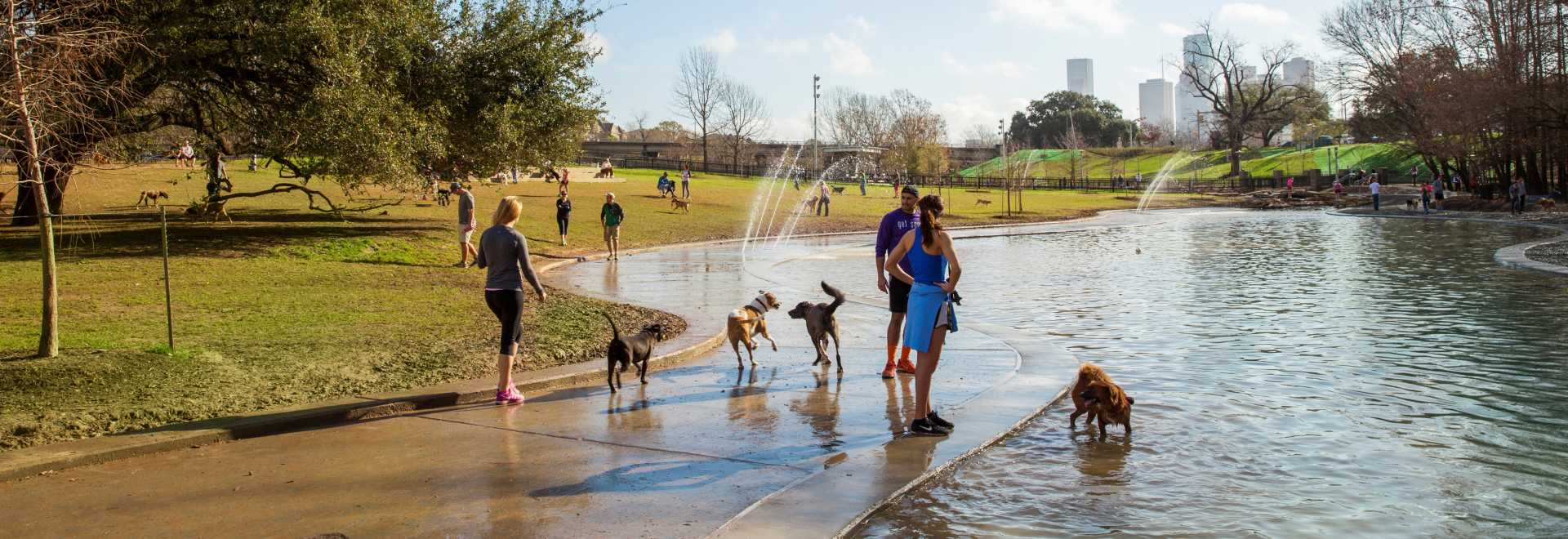 Bear Creek Park Houston Map.Dog Parks In Houston Find Pet Friendly Park Locations Tips