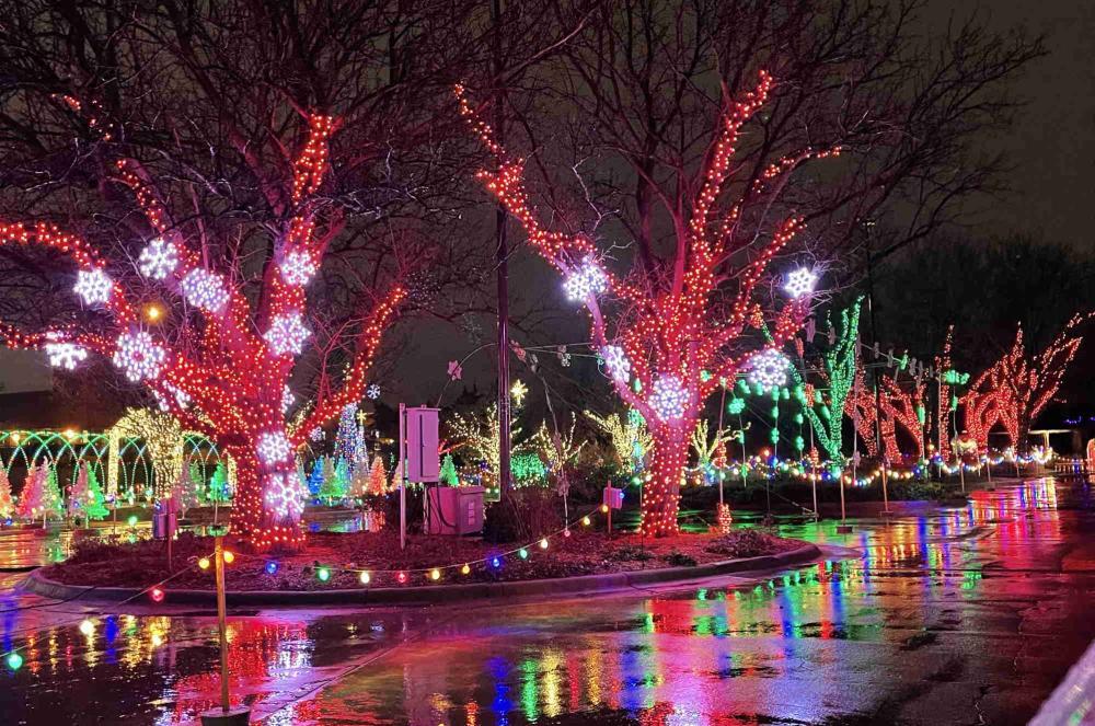 Snowflakes and Lit Trees at Illuminations Drive Thru