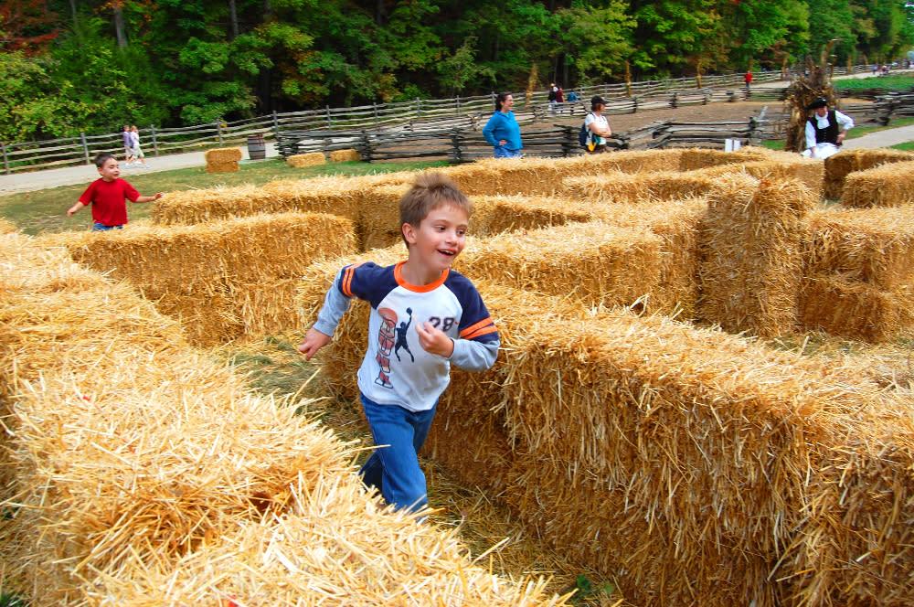 Straw Maze Mount Vernon