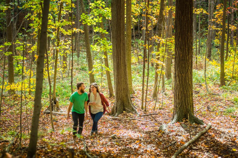 A couple on a fall hike through the trees in Traverse City, MI