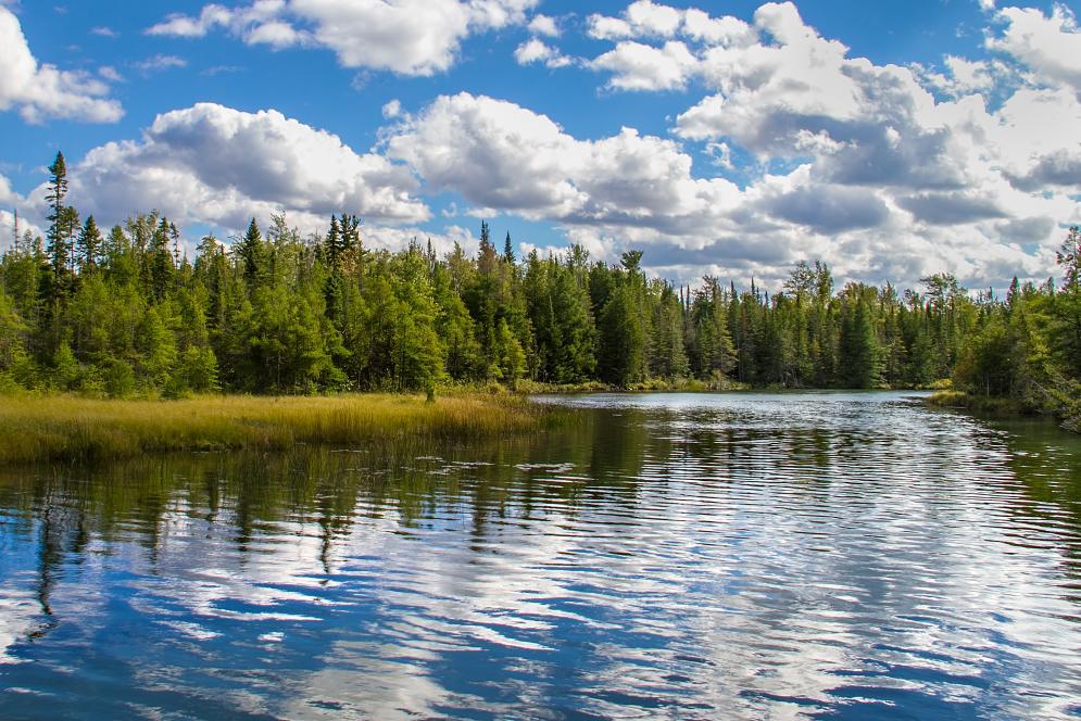 Grass River Natural Area