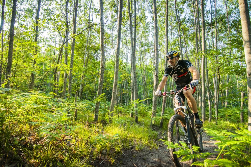 Mountain Biking on the Vasa Trail